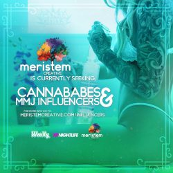 Meristem-Seeking-Influencers-marking