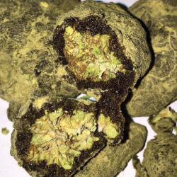 moon-rocks-pot-250-250